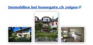 homegate.ch & search.ch